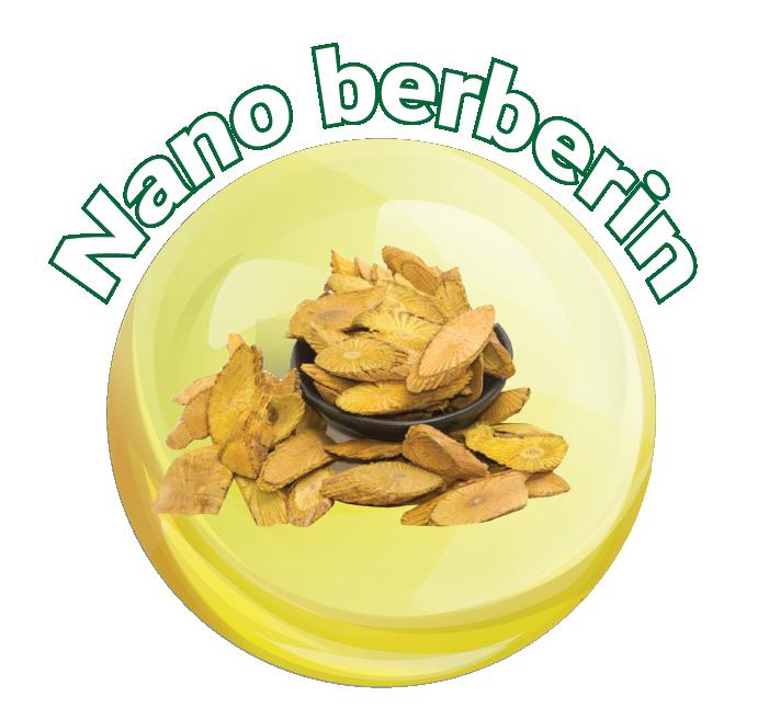 Nano Berbrin: Thành phần trong viên nang mềm Vietlife Cinabet