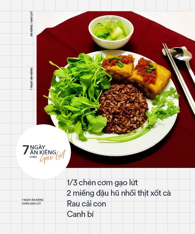 Tác dụng của gạo lứt với bệnh tiểu đường 6