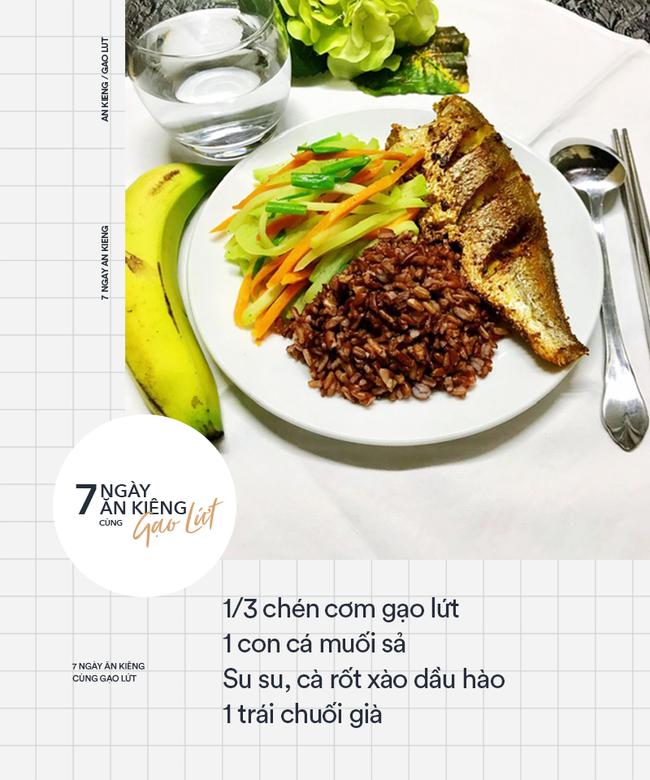 Tác dụng của gạo lứt với bệnh tiểu đường 5