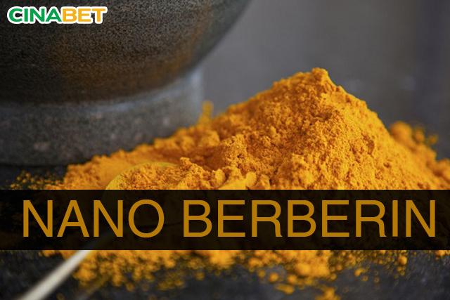 berberin trị tiểu đường, trị tiểu đường bằng berberin, berberin giảm đường huyết, Nano Berberin, berberin, nano berberin là gì, công dụng của berberin, berberin giúp hạ đường huyết, berberin làm giảm đường huyết, cinabet