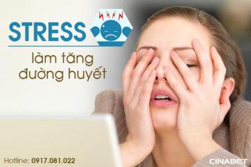 Stress làm tăng đường huyết. Bạn đã biết chưa?