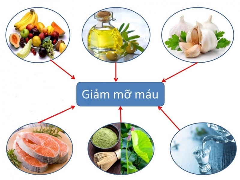 Một số thực phẩm mà người bệnh mỡ máu cao nên ăn