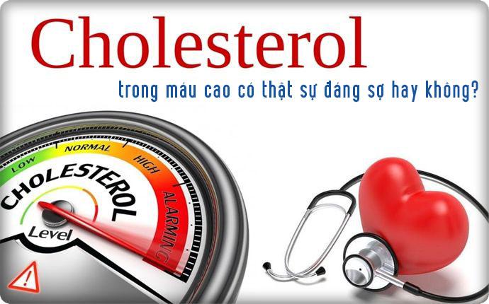 Cholesterol trong máu cao có đáng sợ không?
